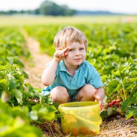 Laat je kind lekker spelen in de moestuin